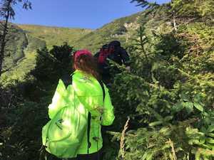 На Говерле ищут 6-летнего мальчика, отставшего от туристической группы и заблудившегося на склоне горы. Обновлено