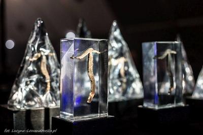 Золотой Ледоруб 2021: Объявлены победители самой престижной премии в альпинизме