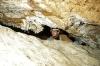 Подземные заметки Геннадия Самохина с экспедиции УСА в пещеру Крубера-Воронья (Абхазия, Арабика). Август 2010