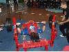 В Луганске прошел  чемпионат города по пауэрлифтингу