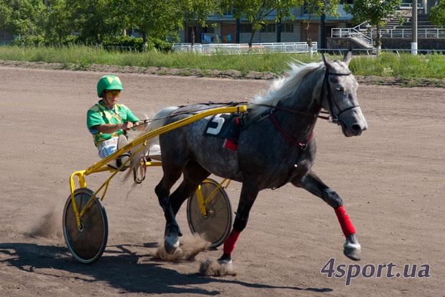 Киевские скачки (август 2011)