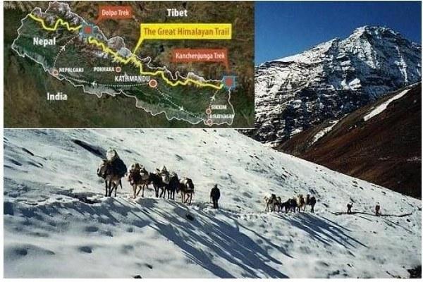 Апа Шерпа , 21 раз поднимавшийся на вершину Эвереста получил диплом книги рекордов Гинесса